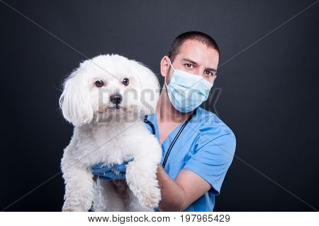 Selective Focus Of Veterinary Posing With White Dog