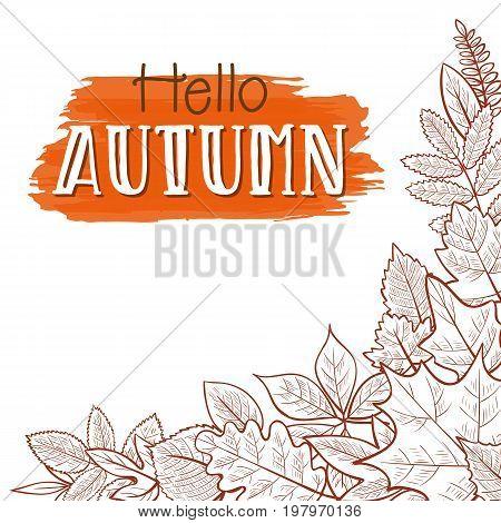 Background with skeleton autumn leaves hello autumn. Vector