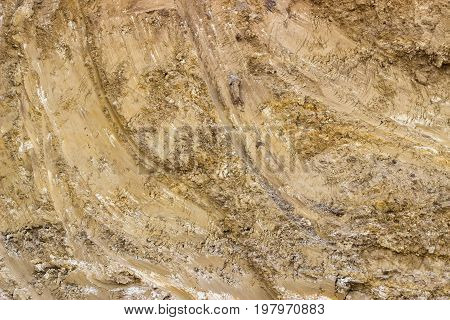 Dirt Texture Background 3
