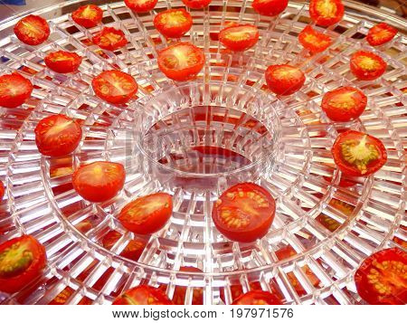 Layer of dried cherry tomatoes in an electric dehydrator