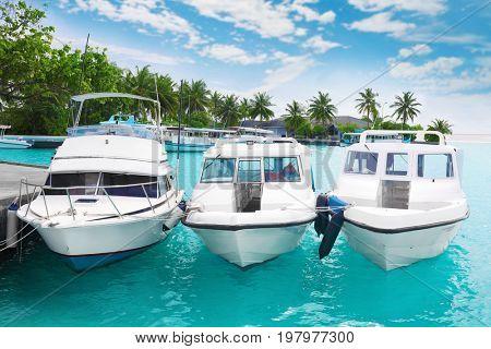Modern boats berthed at tropical resort