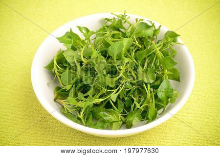 Fresh watercress in a bowl for cooking,Fresh vegetables for salad