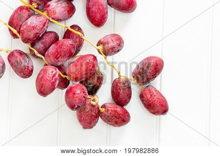 A Bunch Fresh Raw Organic Dates On A Branch On A White Background.