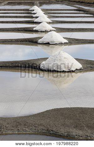 Salt evaporation pond in Re island, France