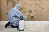 Rear View Of A Pest Control Worker In Uniform Spraying Pesticide On Wall With Sprayer poster