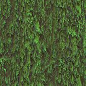 Seamless texture hanging down worn-out ripped rags green cloth or paper. Pattern of moss tree bark wood poster