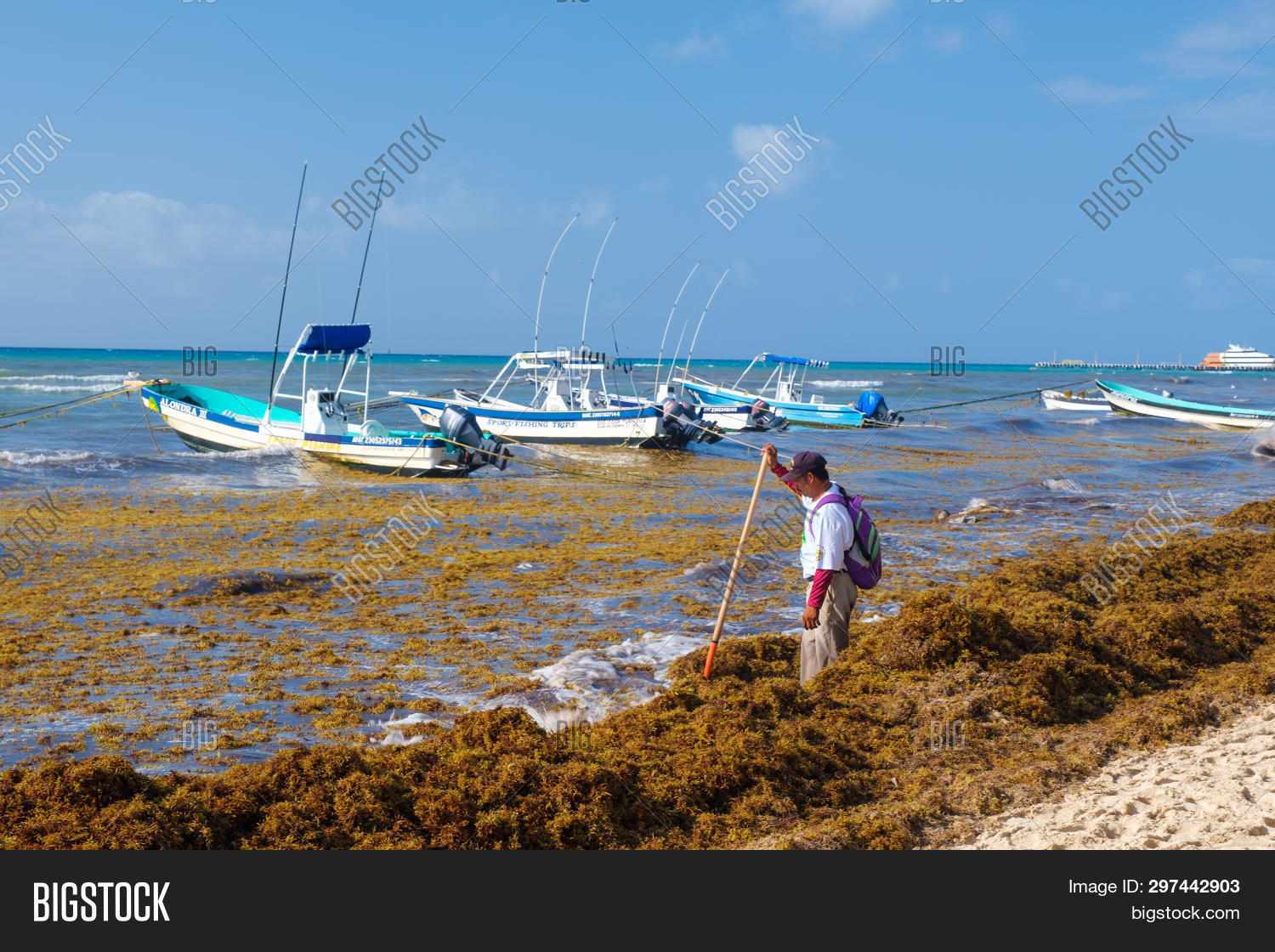 PLAYA DEL CARMEN, Image & Photo (Free Trial) | Bigstock