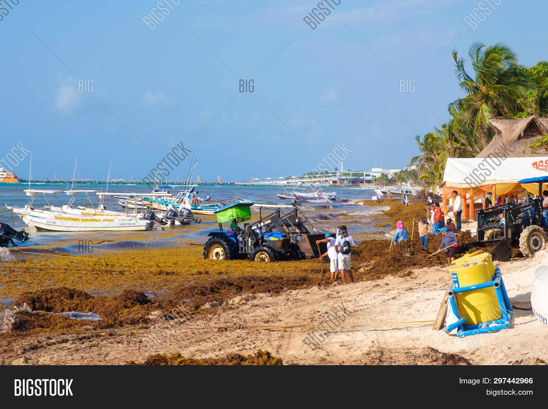 PLAYA DEL CARMEN, Image & Photo (Free Trial) | Bigstock