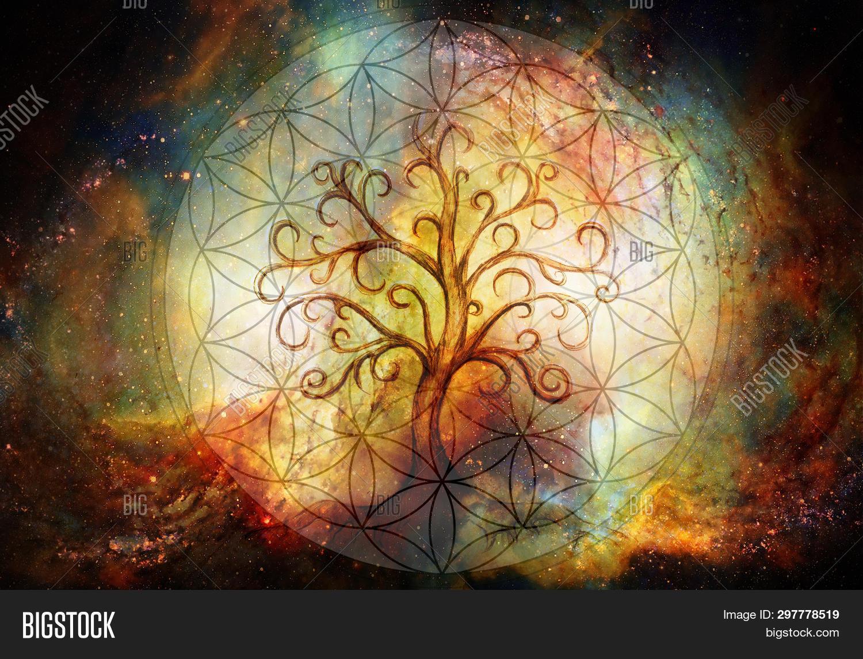 Tree Life Symbol Image Photo Free Trial Bigstock