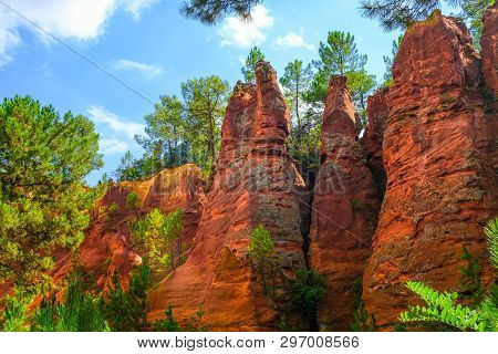 Roussillon Ochre Deposit: Beautiful Pines In Orange Canyon.