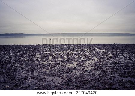 The coast of Washington State under a gloomy overcast, absent of all people. poster