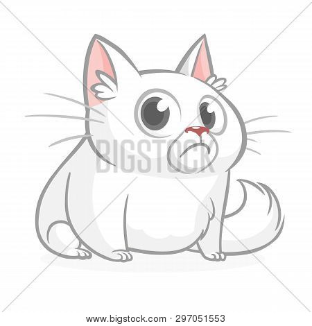 Funny fat cat cartoon. Vector illustration grumpy cat poster