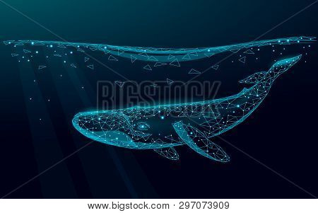 Low Poly 3d Whale Swimming Undersea. Water Ocean Surface Dark Night Glowing Wave. Large Humpback Wha