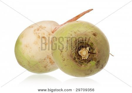 Fresh two radish isolated on white background