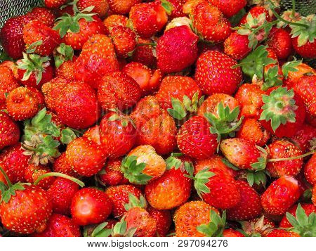 Fresh Strawberries Background. Strawberry. Food Background.copy Space. Top View, Healthy Food For Br