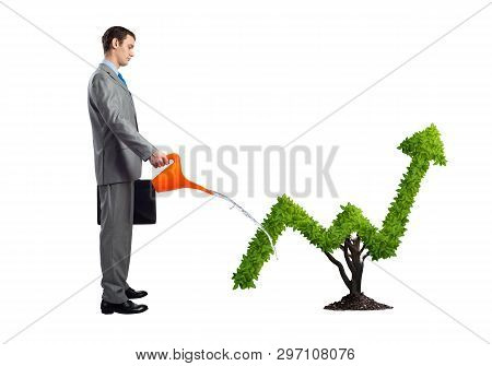 Businessman Watering Green Plant In Shape Of Grow Up Trend Isolated On White Background. Business An