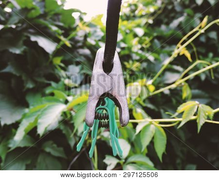 Linen Clothespins In The Yard. Plastic Linen Clothespin On Old Rope On Green Background. Many Multi-