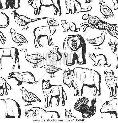 Animals And Birds Seamless Pattern Background. Vector African Safari Hunt Cheetah And Buffalo, Wild
