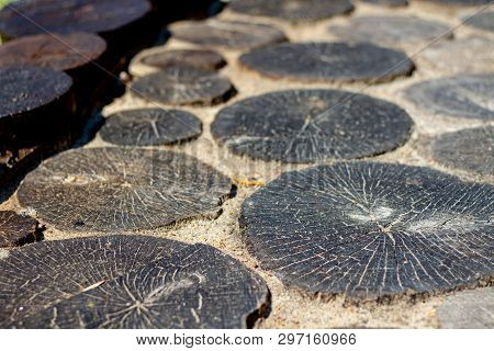 Decorative Stumps In Landscape Design. Dark Old Cracked Wooden Stumps In The Design. Elements Of Dec