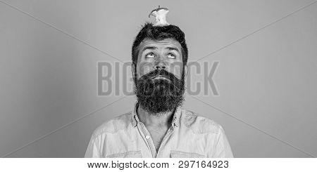 Live Target Concept. Man Handsome Hipster Long Beard Almost Eaten Apple Stump On Head As Target. Wei