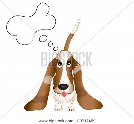 the dog Basset Hound