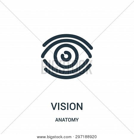 Vision Icon Isolated On White Background From Anatomy Collection. Vision Icon Trendy And Modern Visi