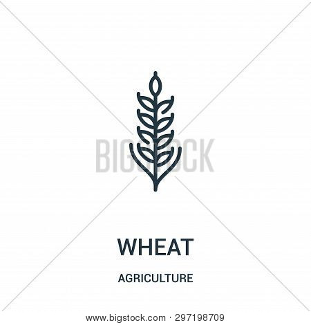 Wheat Icon Isolated On White Background From Agriculture Collection. Wheat Icon Trendy And Modern Wh