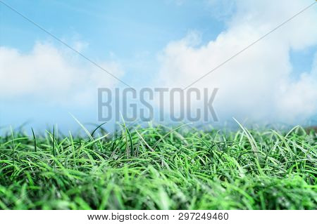 Green Grass And Beautiful Blue Sky With White Wispy Clouds And Sunlight. Great For Backgrounds And E