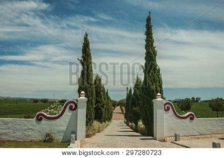 Charming Decorated Gateway And Wall Made In Masonry With Path Encircled By Poplars, In Vineyard Near