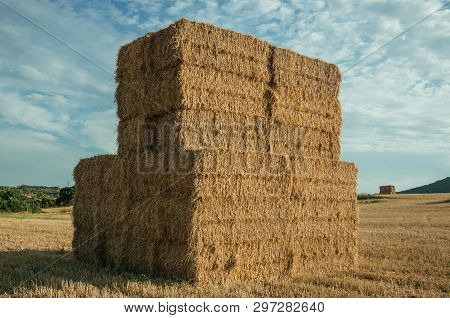 Rural Landscape With Hay Bales Piled Up On A Field Covered By Straw At Sunset, In A Farm Near Elvas.