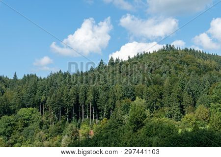 An image of a forest hill in south germany