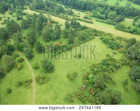 An image of an aerial view trees