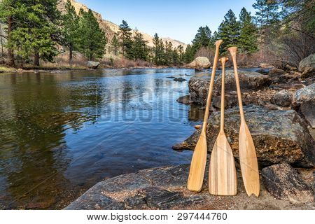 three wooden canoe paddles on shore of mountain river - Cache la Poudre RIver in northern Colorado, early spring scenery