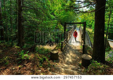 Woman crossing a bridge in the Kumano Kodo pilgrimage trek, Japan