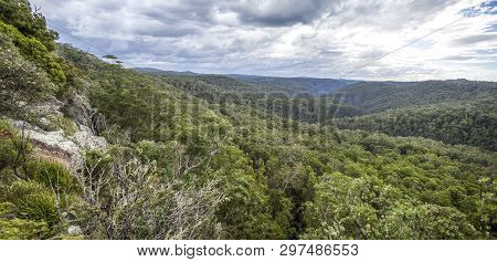 Spectacular View Of The Escarpment And Deep Valley Clothed With Gondwana Rainforest Of The New Engla
