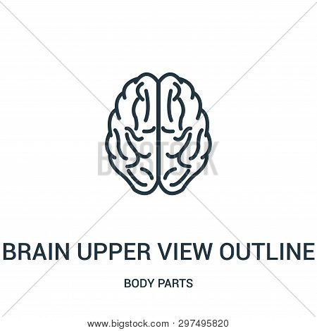 Brain Upper View Outline Icon Isolated On White Background From Body Parts Collection. Brain Upper V