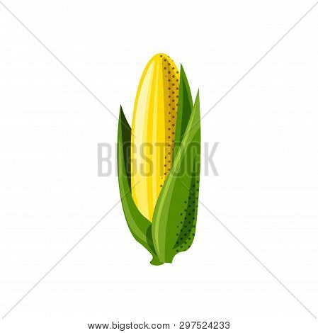 Fresh Juicy Veg - Corn Vector Icon Isolated On White Background. Corn Icon, Flat Style, Vegetable Ve