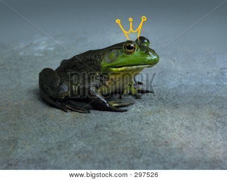 Frogprinc