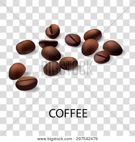Vector Realistic Illustration Of Coffee Beans. An Isolated Drawing Of Coffee Beans. Vector Design El