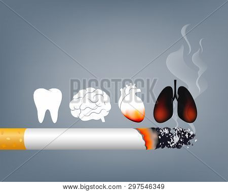 Stop Smoking, World No Tobacco Day. Smoking Is Harmful To Human Organs. Resulting In Organ Damage An