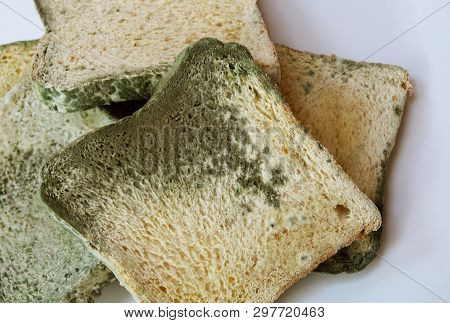 Moldy On Bread On White Background, Inedible Food And Expired.