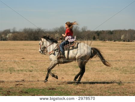 Galloping Into The Wind