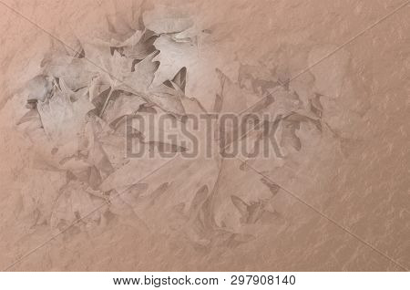 Illustration Faded Autumnal Leaves On A Russet Textured Background. Suitable As A Textured Fade Out.