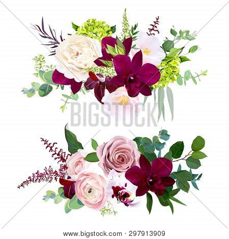 Luxury Fall Floral Vector Bouquets.dark And White Orchid, Garden Dusty Rose, Ranunculus, Burgundy Re