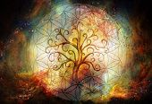 tree of life symbol and flower of life and space background, yggdrasil. poster