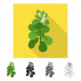 Isolated Object Of Leaves And Leaf Symbol. Set Of Leaves And Botanical Vector Icon For Stock.