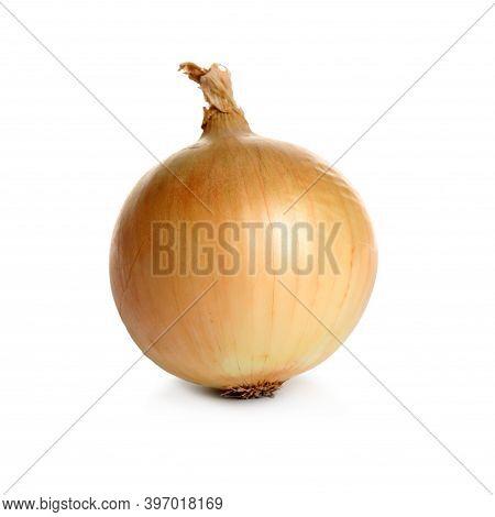 Fresh Ripe Onion Bulb Isolated On White