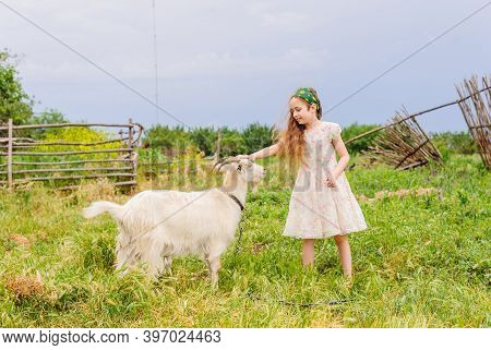 Portrait Of Little Girl Outdoors In Summer. Girl And Goat
