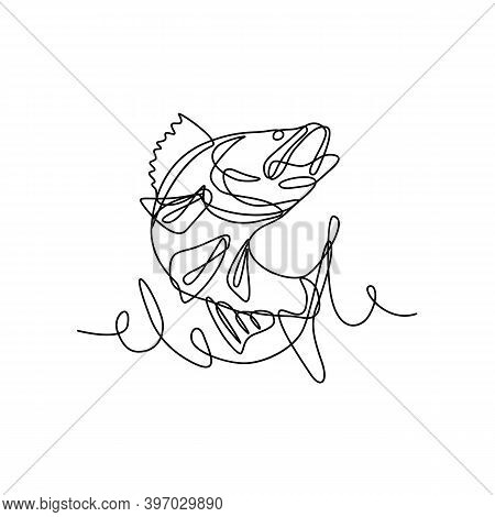 Continuous Line Drawing Illustration Of A Walleye, Yellow Pike Or Yellow Pickerel, A Freshwater Perc
