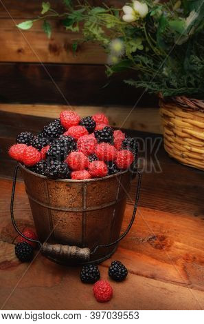 Fresh picked blackberries and raspberries in a galvanized pail on a rustic wooden table. Still life with warm side light.